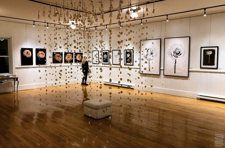 Gallery Hanging System offers flexibility to exhibit art