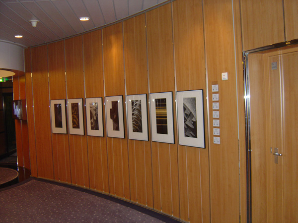 Hanging Art with Tensioned Frame on Cruise Ship Walls