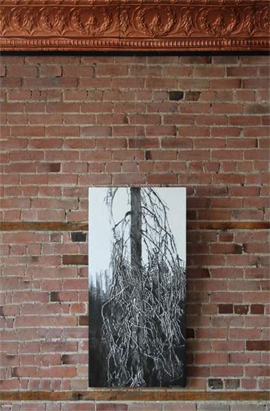 Hanging art on a brick wall with AS Hanging Display Systems Cable System.