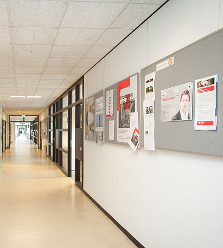 Institutional Wall Displays